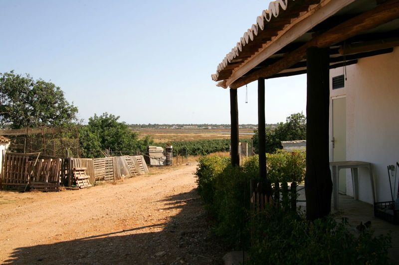 Homestead 4 bedrooms Quinta do Sobral Castro Marim - irrigated land, arable crop