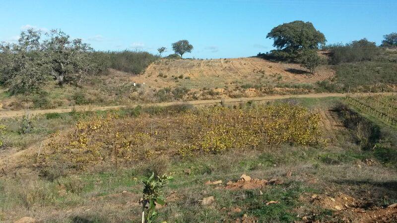 земля загородный c 2840m2 Corujos Azinhal Castro Marim