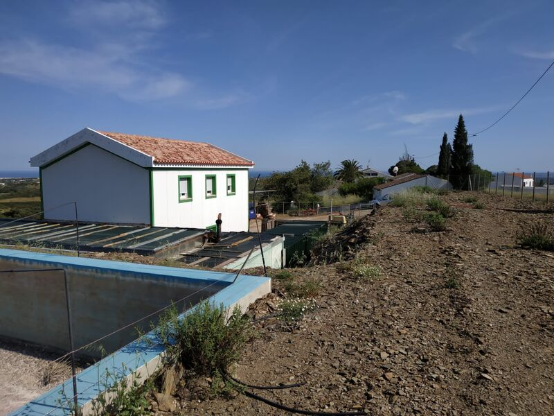 Farm V3+1 Tavira - olive trees, tank, swimming pool, alarm, peach trees, great view, fruit trees, water, water hole, orange trees, garage, garden