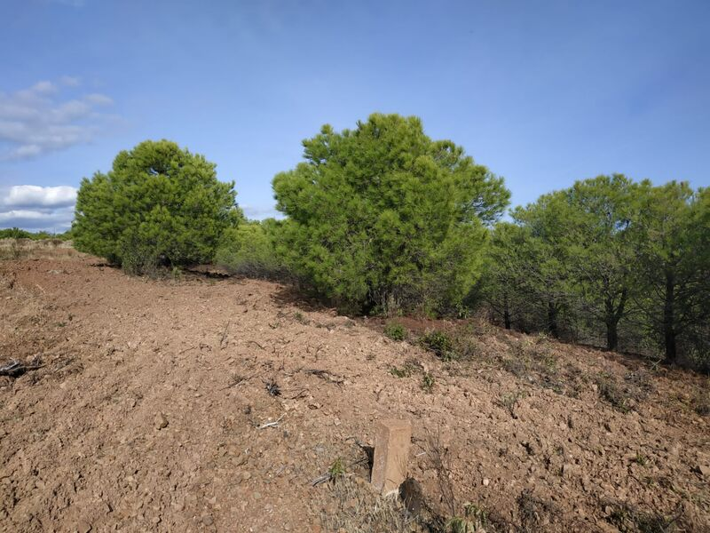 Land Rustic with 25080sqm Corte do Gago Azinhal Castro Marim - well, easy access, water