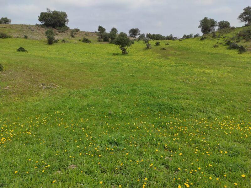 земля загородный c 16320m2 Belixe Castro Marim - электричество, отличный подъезд