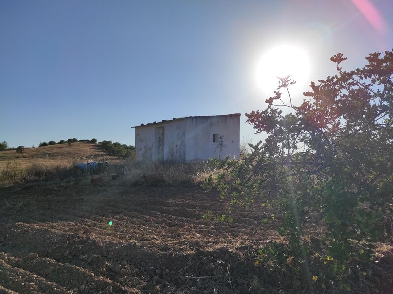 Land Agricultural with 38720sqm Soalheiras Castro Marim - water, great location, easy access, well, fruit trees, sea view
