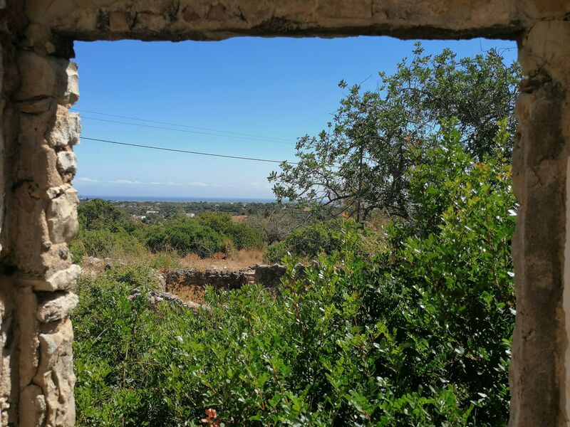 Land Agricultural with 10040sqm Quelfes Olhão