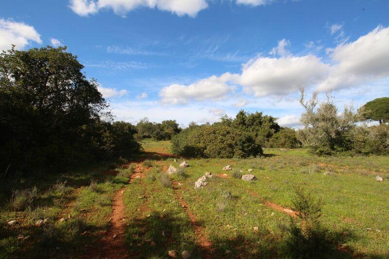 8000 m²  Land plot in Silves