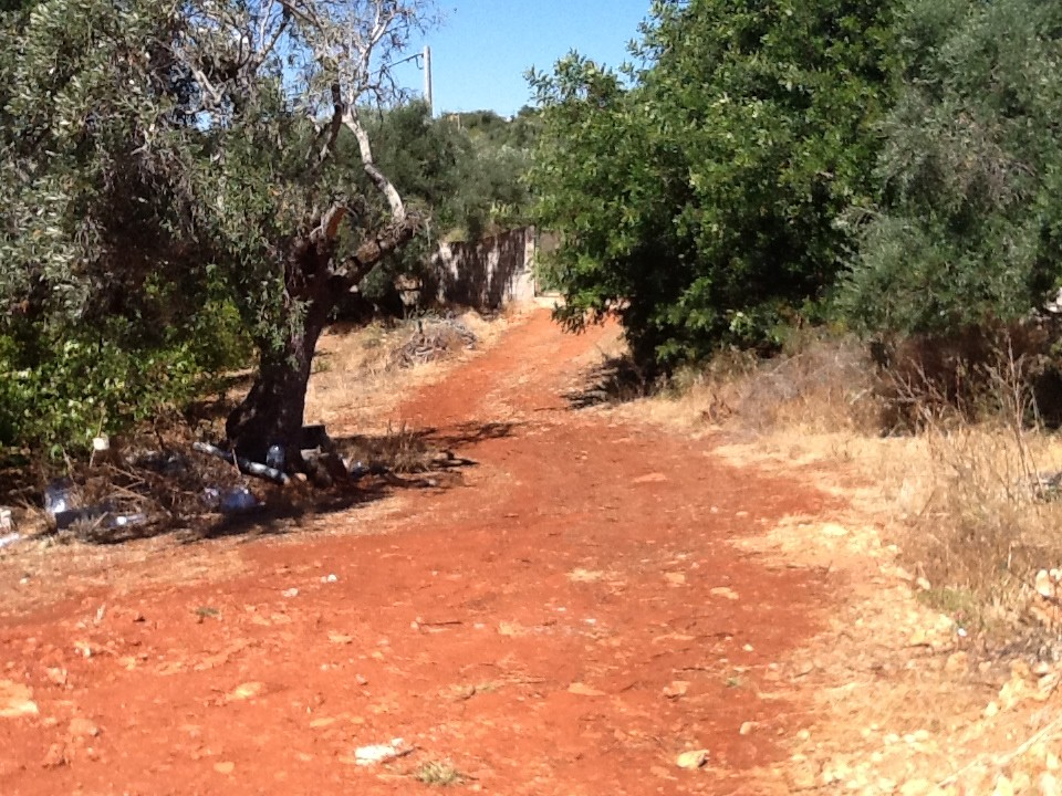 18780m2-130m2-Land-plot-for-sale-in-Silves-Algarve