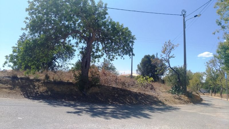 1810 m² Land plot for sale in Albufeira, Algarve