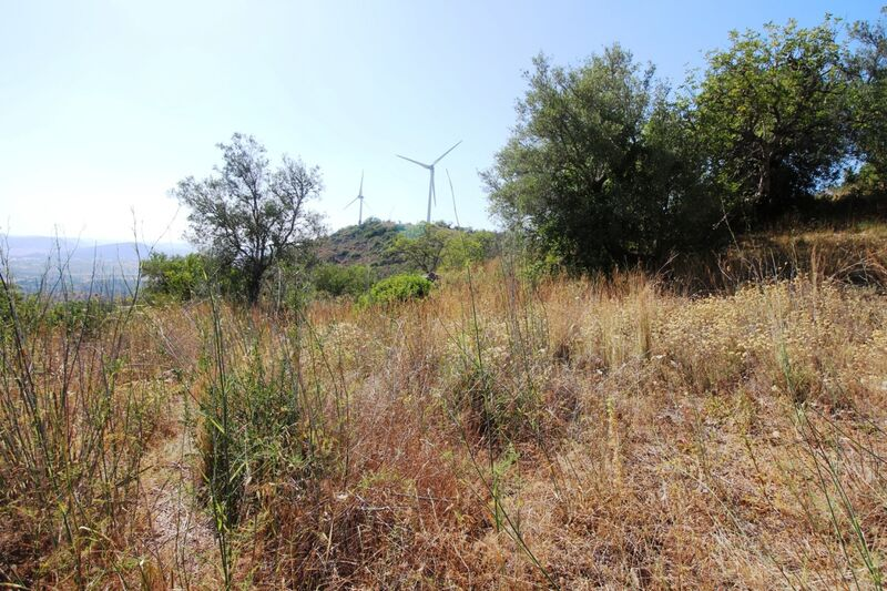 5 000 m²  Land plot in Silves