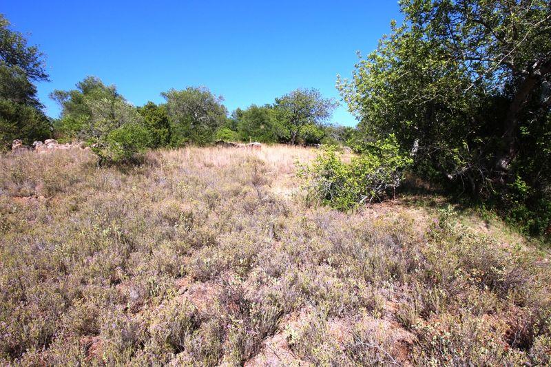 5000 m²  Land plot in Silves