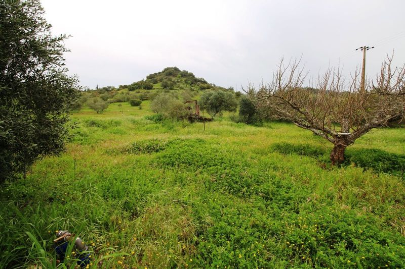 3 110 m²  Land plot in Silves