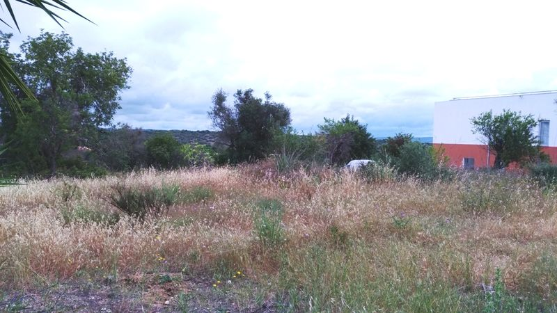 1 178 m² Land plot for sale in Silves, Algarve