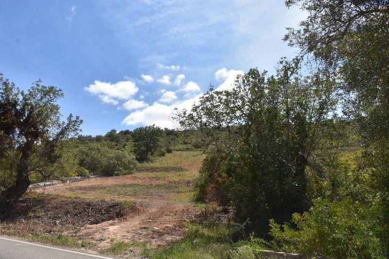 2440 m²  Land plot in Albufeira