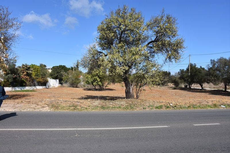 6280m2-Land-plot-for-sale-in-Olhão-Algarve