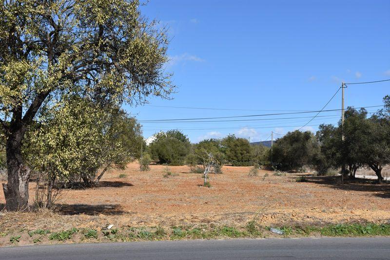 6280 m²  Land plot in Olhão