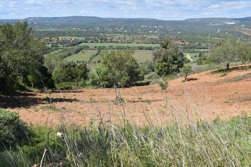 6440 m² Land plot for sale in Albufeira, Algarve