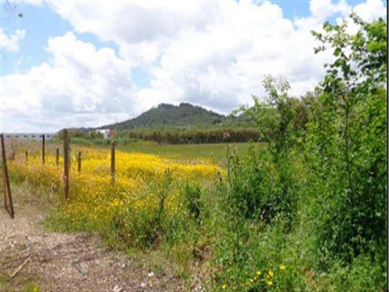 Land Rustic Vila Franca de Xira - easy access