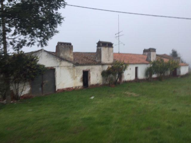 Terreno Santiago do Escoural Montemor-o-Novo