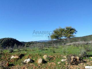 Terreno Rústico com 12250m2 Portimão - Rasmalho