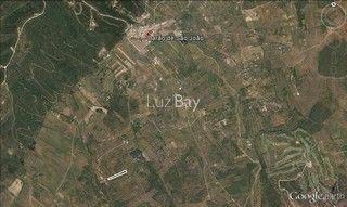 Terreno Agrícola com 11840m2 Barão de São João Lagos - electricidade, árvores de fruto