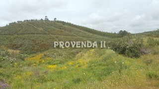 Land Rustic with 30000sqm Fonte Velha Aljezur - beautiful views