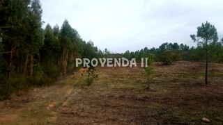 Land Agricultural with 61000sqm Aljezur - water, mains water