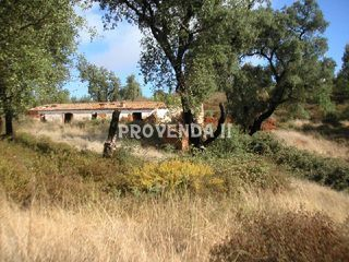 Land with 110sqm Marias  Monchique - electricity, water, cork oaks, beautiful views