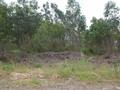 Terreno para construção Salir do Porto Caldas da Rainha