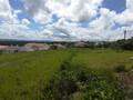 Terreno com 2976m2 Costa de Prata Serra do Bouro Caldas da Rainha à venda