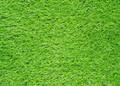 1000013498_depositphotos_35129329-stock-photo-artificial-green-grass-field.jpg