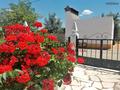 À venda Quinta V4 Santo Aleixo Monforte - lareira, garagem, furo, terraço, varanda, sótão, água
