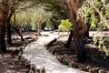 1000013996_garden_park2__medium_.jpg
