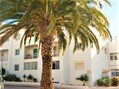 Apartamento T0 para venda Albufeira - piscina, cozinha equipada, zona calma
